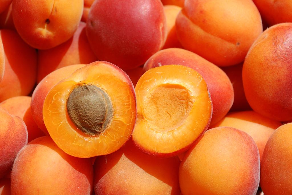 Il saluzzese e la raccolta frutta: Uncem chiede impegno di tutti gli enti