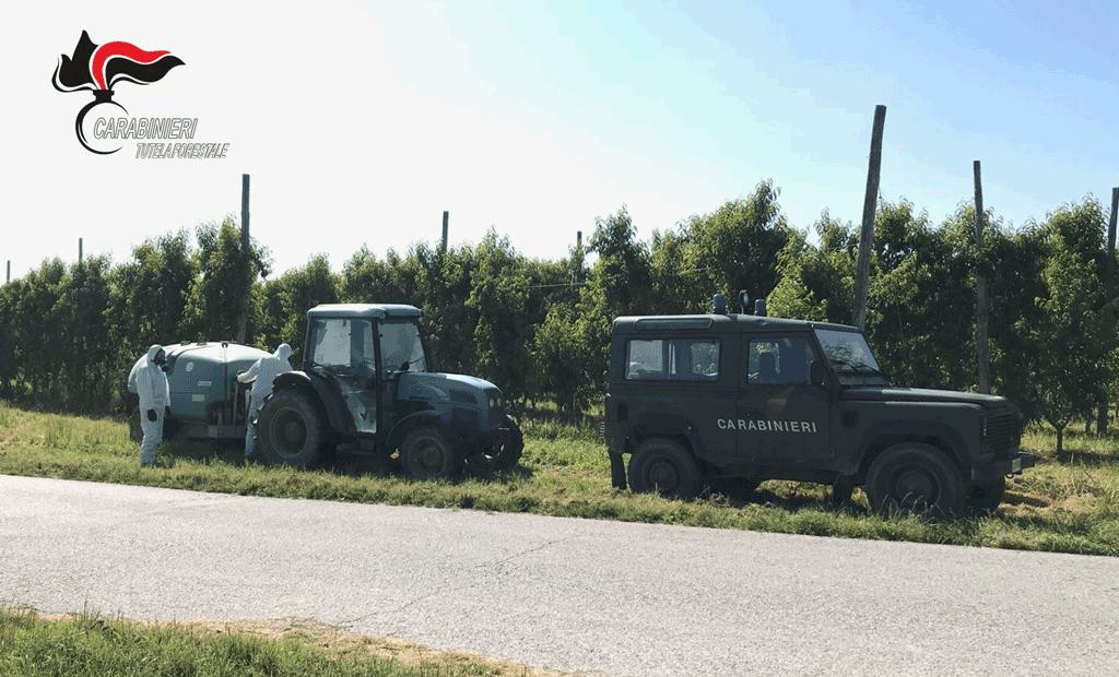 Carabinieri riscontrano uso scorretto di fitosanitari in agricoltura