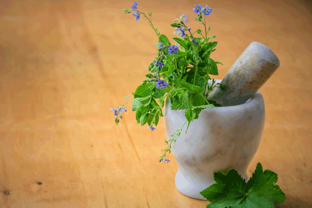 Essica-Erbe-Aromatiche