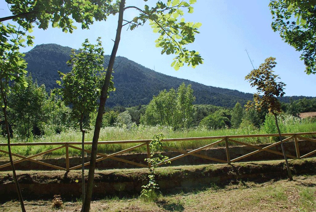 Monte-San-Giorgio-Piossasco