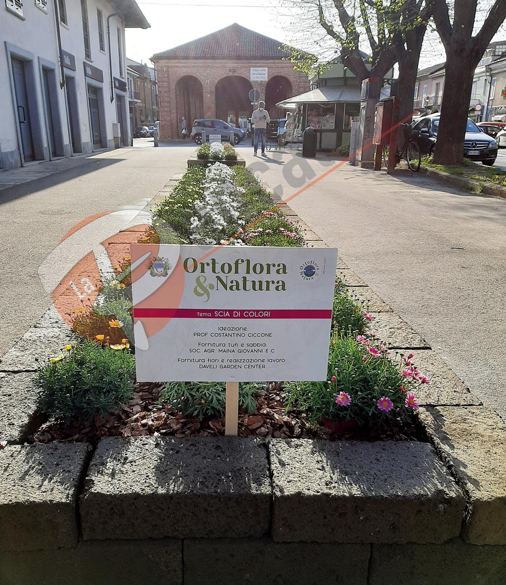 Salta Ortoflora, ma Carmagnola celebra l'evento con aiuole fiorite
