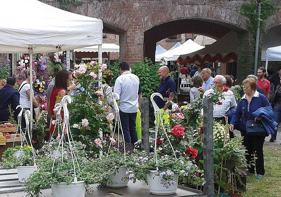 Salta il Mercato di Fiori & Vini, confermato il concerto e la mostra d'arte