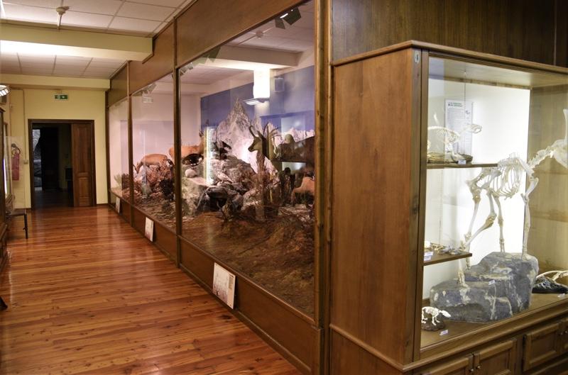 Museo del fiume Po di Revello