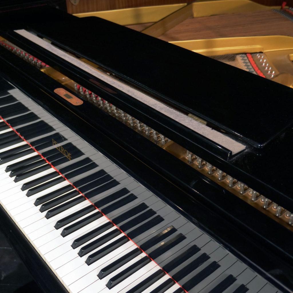 som progetto cantoregi racconigi concerto la pancalera