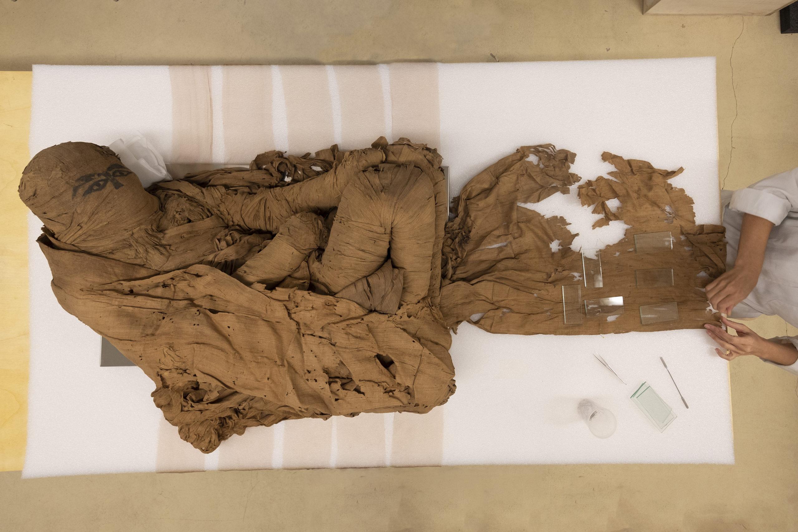 A Bra prima esposizione della mummia egizia appena restaurata