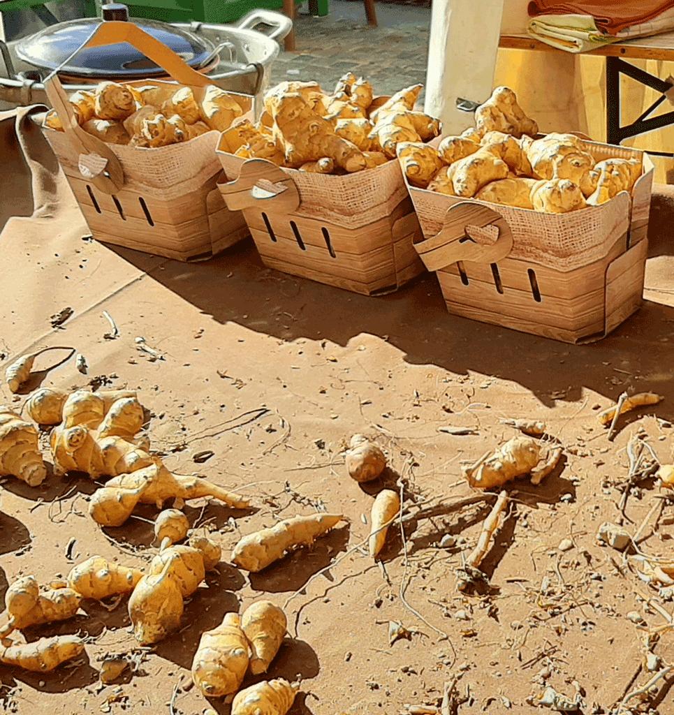 Ciapinabò-carignano-la-pancalera