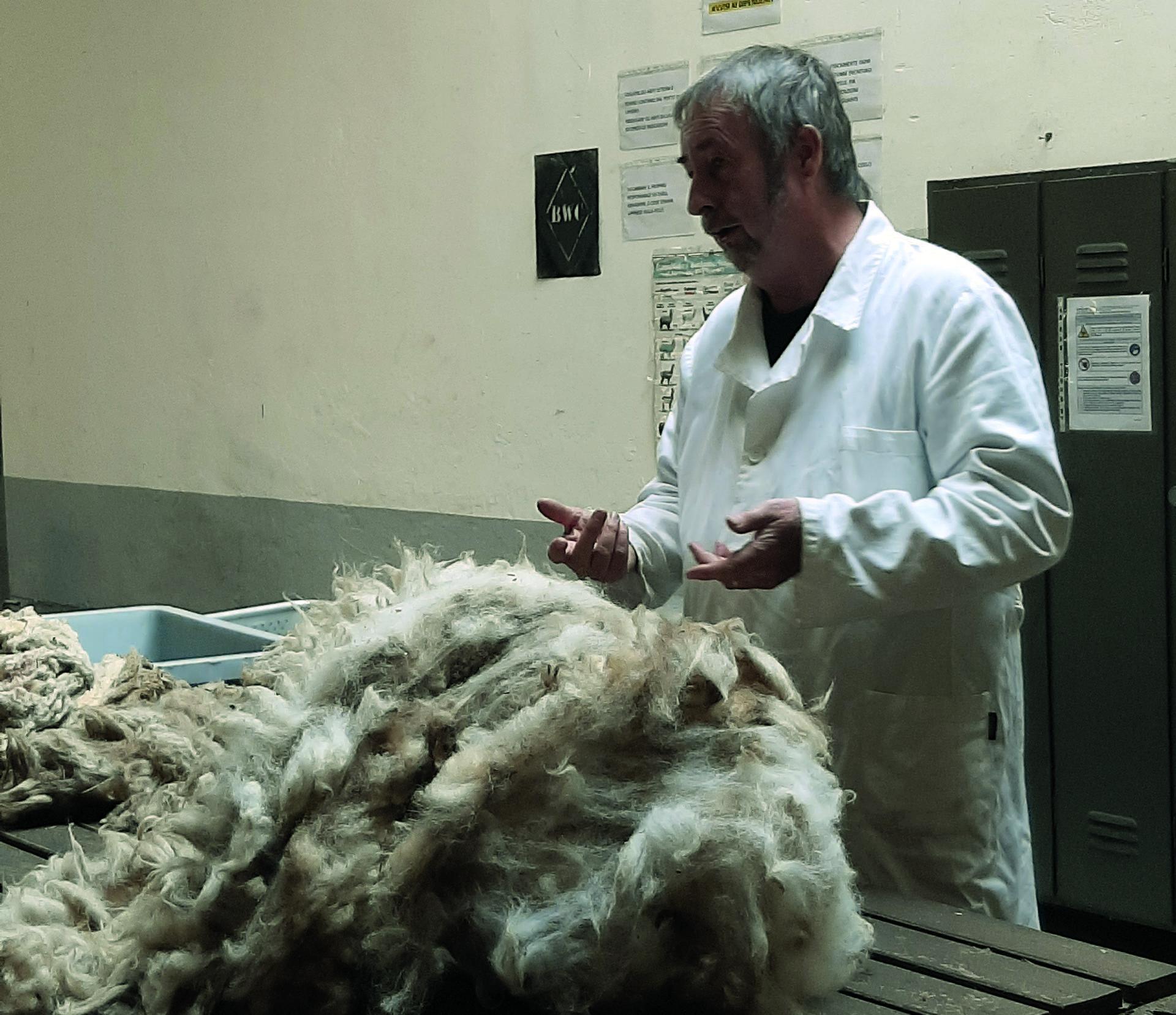 Nel biellese, incontro con Nigel Thompson, l'uomo della lana