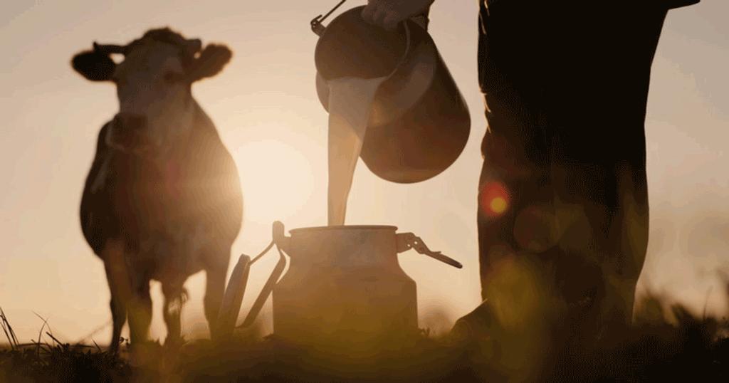 Staffarda, due giorni dedicati a economia agro-alimentare e turismo-natura